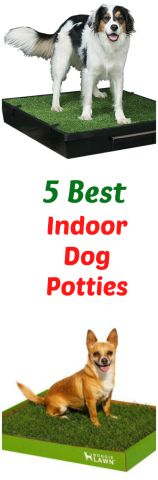 Dog potties are a good option for all pet owners, but especially if you work long hours, have an unpredictable schedule or live somewhere too hot, cold or wet. After doing a ton of research, I think these five dog potties are some of the best indoor dog potties available and the ones I recommend you try :