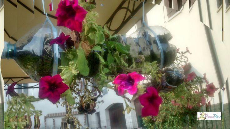 fioriere originali da appendere realizzate con bottiglie di plastica planters with plastic bottle
