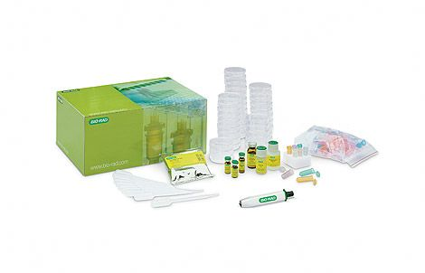 pGLO Bacterial Transformation Kit