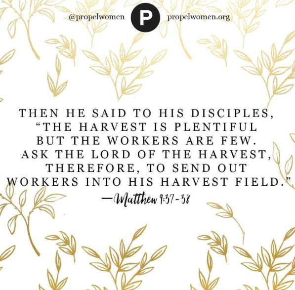 "Pray to the Lord of the harvest and ask Him to ""send forth"" workers. You cannot harvest a field you are not in. —Christine Caine"