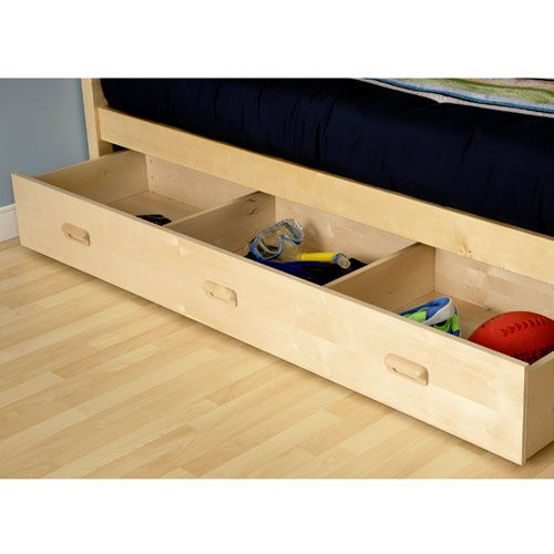 Under Bed Storage Drawer - $199.00. Possibility for my shoes?