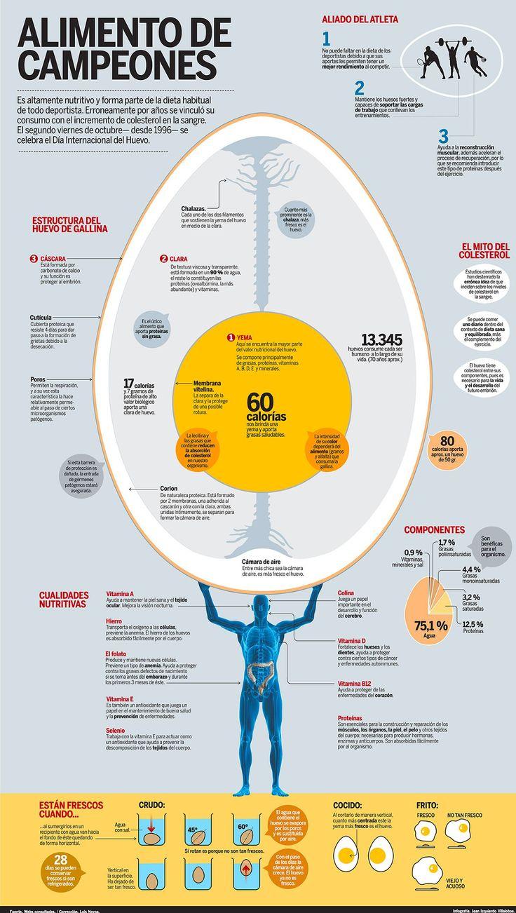 Todo lo que necesitas saber sobre el huevo ( seguir el enlace para ampliar)  #huevo #infografia