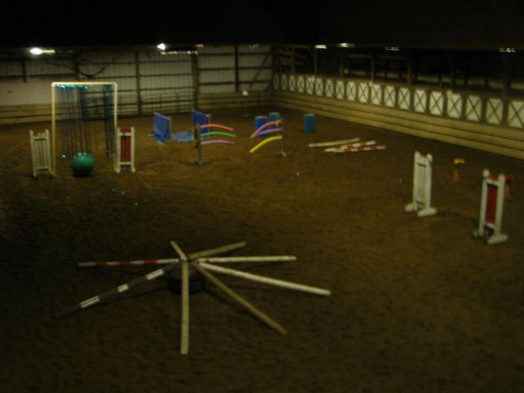 Dog Agility Obstacles For Sale For Giant Breeds