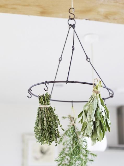 Herb-Drying Rack from Cox & Cox