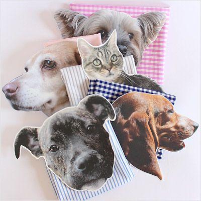 Make it! Pet Pillows