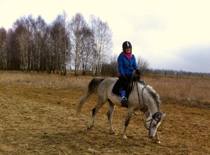 Friend, Arabian Horse, Staillon, Visit, Fun