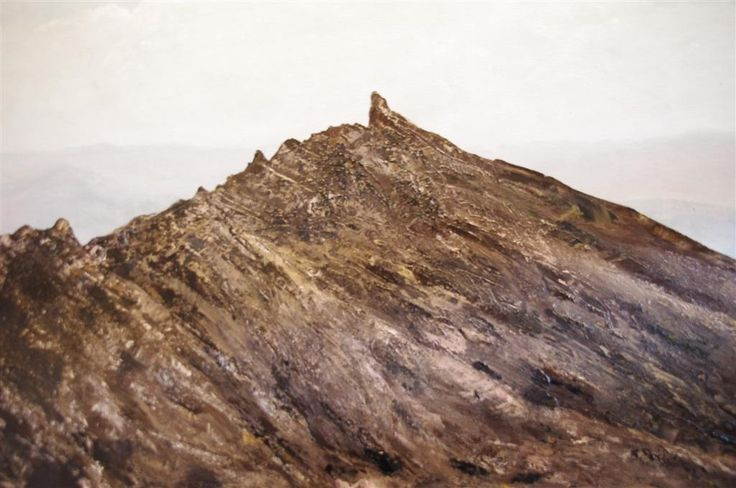 Mt Mueller 4666: Tasmanian Landscape