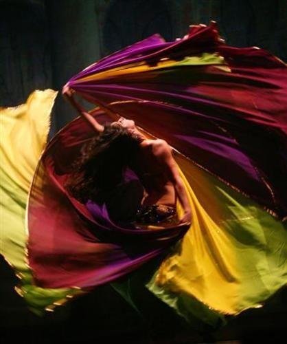 Veil Bellydance