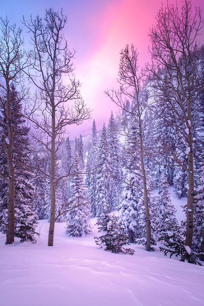 Beautiful Winter Outfit Www Pinterest Com: 17 Best Ideas About Landscape Photos On Pinterest
