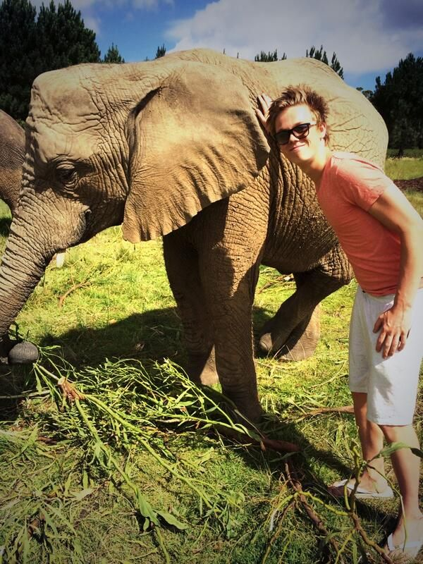 Caspar Lee with an elephant!