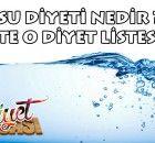 Su diyeti listesi