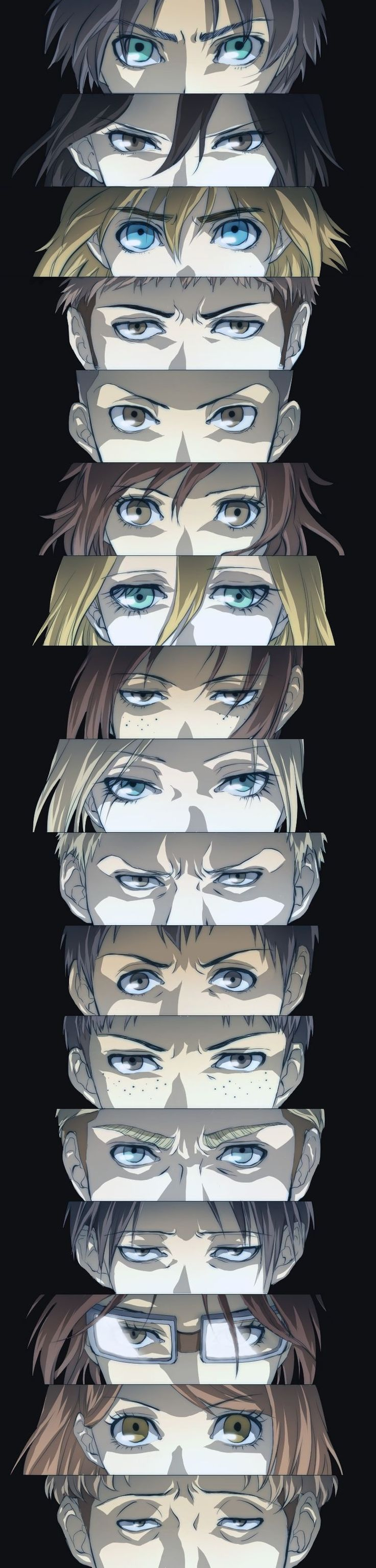 This is everything    Attack On Titan ♜