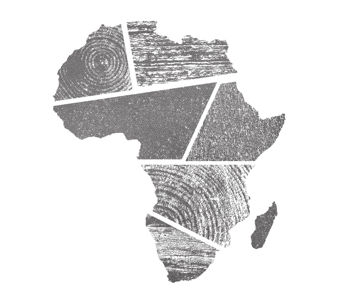 Africa / Jake Dugard