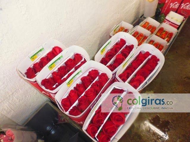 Cultivo de Rosas, Postcosecha y Distribución, Sabana de Bogotá