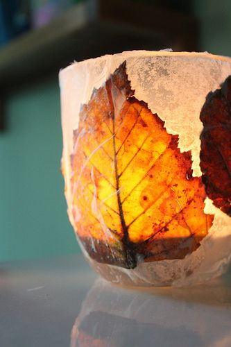 Autumn Leaf Lantern - for Martinmas
