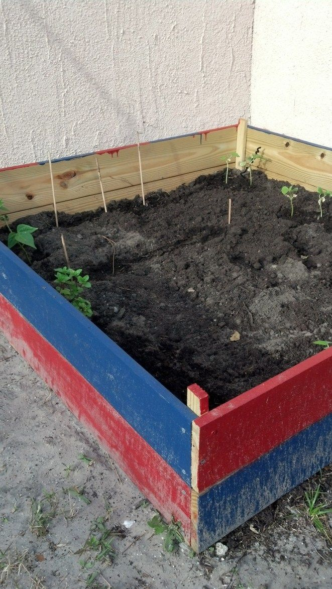 Above Ground Garden Box 4x4x1 16 Cubic Feet Of Soil (bought From Home Depot,