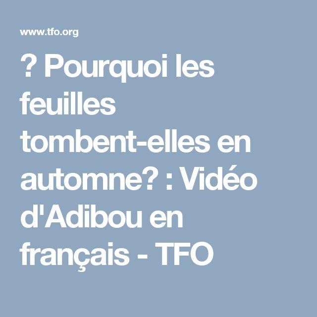 ⇒ Pourquoi les feuilles tombent-elles en automne? : Vidéo d'Adibou en français - TFO