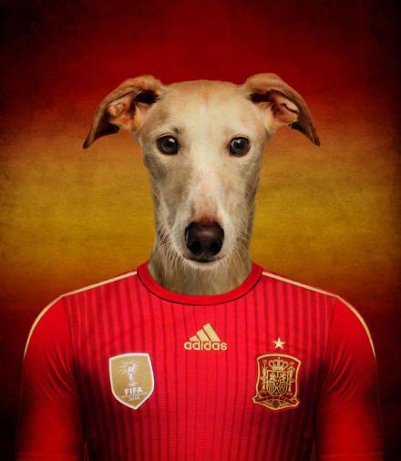 Defending Champion - Spain