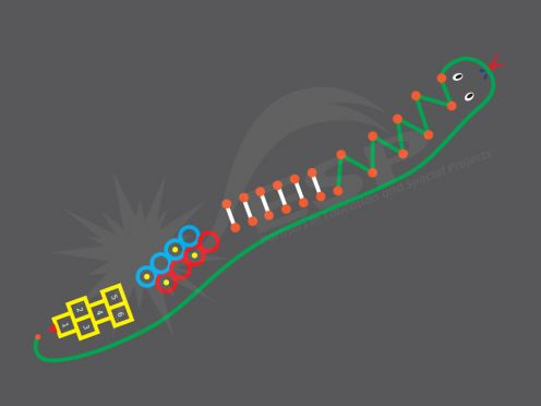 Playground Markings Agility Adder; promotes jumping, stepping, running, skipping, zig-zagging and hopping. Improves their stability whilst turning, landing and twisting.