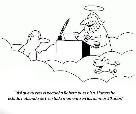 """Pets keep you healthy... even after the fact! Translation of above: """"So you are little Robert; ok then, Bones has been talking about you the last 50 years."""" All dogs do go to heaven!About You, Dogs, Animal Stuff, Heaven, Facts, Bones, Concienciación Animal, Fun, To Heaven"""