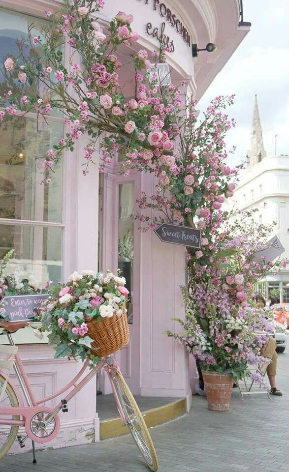 Cute store, painted pastel pink, pink flowers, vine,bicycle with flower basket ahhhhhI'm in love