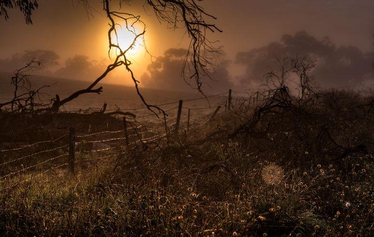 Sunrise web by Steve Chilton on 500px
