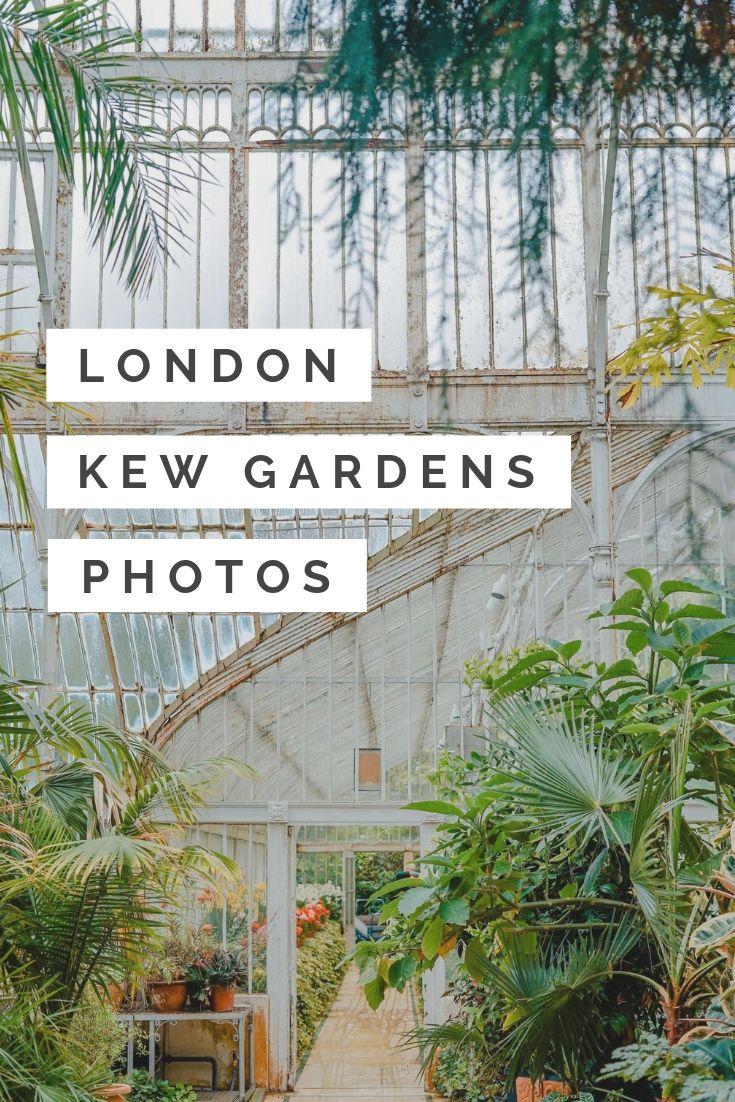 07cabd5f418f9bd5f2942cf2d8df1694 - Best Day To Visit Kew Gardens