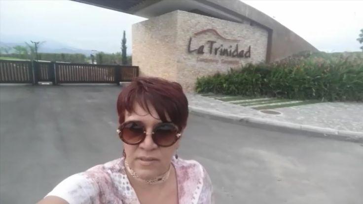 LA TRINIDAD Cerritos Pereira Lotes Campestre Para Venta VIDEO SELFIES
