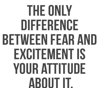 fear and excitement quote