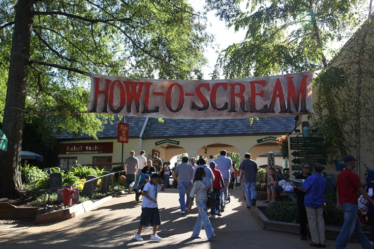 1000 Images About Howl O Scream On Pinterest