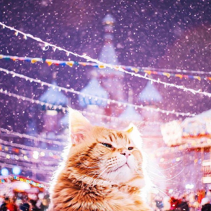 【なにこれ現実…!?】魔法の世界みたいなモスクワの夜景を撮影したカメラマンが大人気 - FEELY