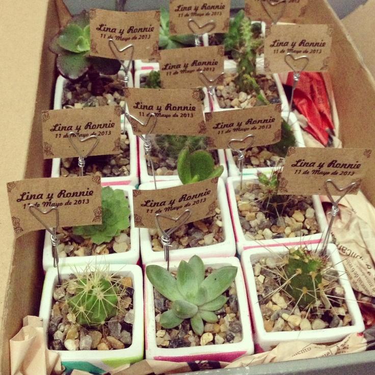 Cactil Cactus Land Wedding Gift