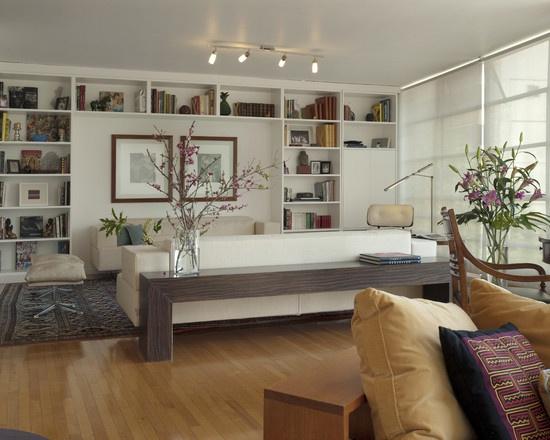 Modern Living Room Built In Shelves Design Pictures Remodel Decor And Ideas