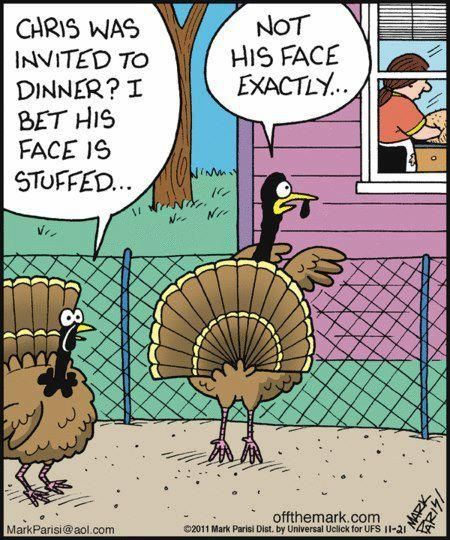 Funny Thanksgiving Quotes Unique 40 Best Funny Thanksgiving Quotes Images On Pinterest  Thanksgiving