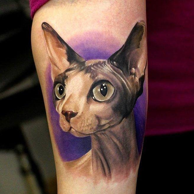 Sphynx Cat by @xandervoron in Novosibirsk Russia. #cat #sphynx #sphynxcat #xandervoron #novosibirsk #russia #tattoo #tattoos #tattoosnob