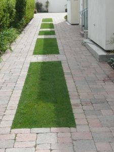 Side yard - a softer driveway for multiple uses.