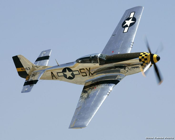 P51 Mustang. This what the Ford Mustang is named for. The airplane was named for the wild southwestern US horse.#USAF