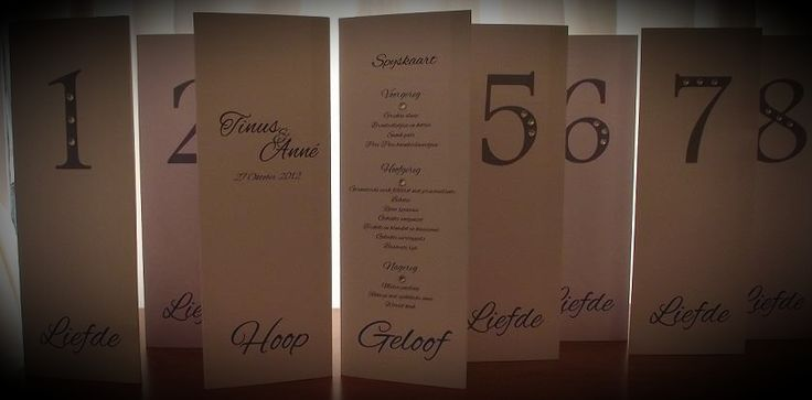 Triangular menu's.  Such a great idea and space saver on your tables.  I printed the couples names and date on the one side, table number on the other and the last part the menu