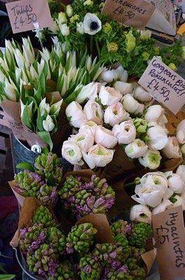 Gingerlily flower shop