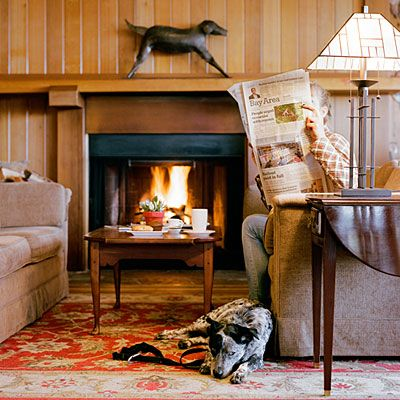 Best Dog Friendly Camps In Mendocino