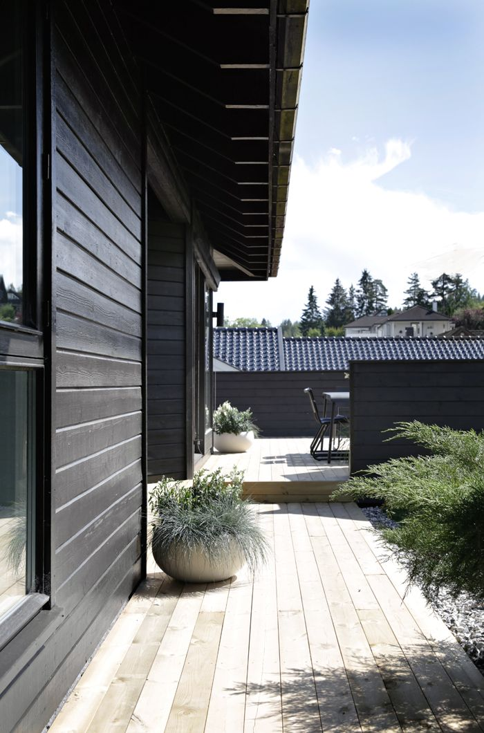 1447 best images about container and planters on pinterest for Season 2 terrace house