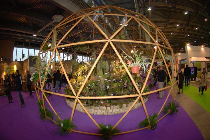 La #Cupola Geodetica di Lerian ospita una mostra dedicata all'orchidofilo Enzo Cantagalli e raccoglie preziosi esemplari rari di #orchidee
