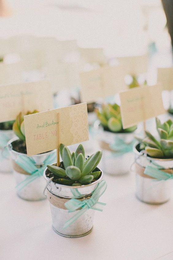 plantas como recuerdos de primera comunion - Buscar con Google