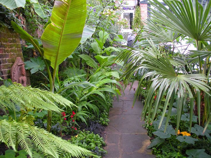 Indoor Tropical Garden planted with Betel Nut Trees and Various Kind of Tropical Plants and Flowers in the Ground and Pots complete with Garden Path and Banana Trees - Beautiful yet Unique Tropical Garden Design – VizDecor