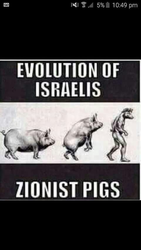 #EVOLUTION OF #ISRAELIS - #ZIONIST #PIGS : ;GOD had made #Many of the #ISRAELIS. #APES & #PIGS and #CURSED them due to #Transgression of Ten #Commandments [ #Sabbath ] . The #Zionist #Jews are the #BLOODLINE of those #APES & #PIGS . This is the reason that #Zionist #Jews are not #Human but #Animals and #Beasts .