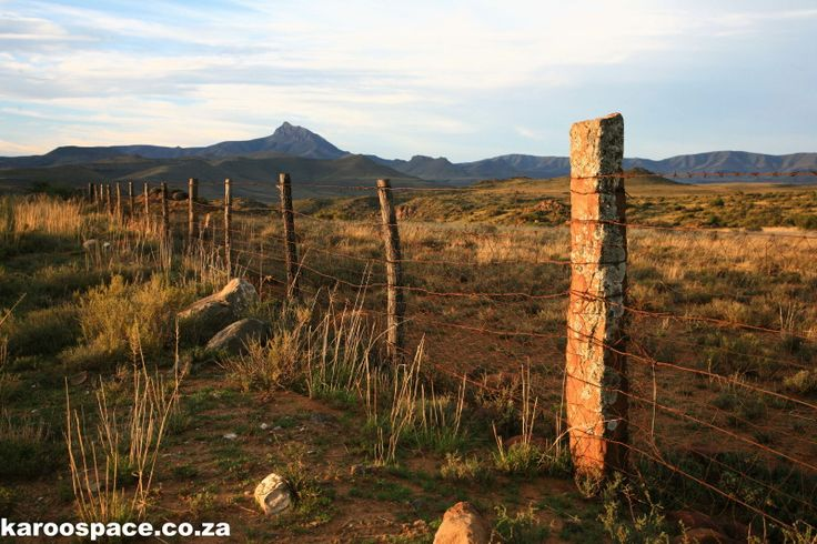 Compassberg in the distance Karoospace provides a Gentle Guide to Karoo Roadtripping