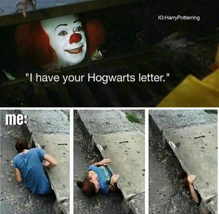 I WOULD RATHER DIE THAN CLIMB IN THAT DRAIN HOGWARTS OR NO!