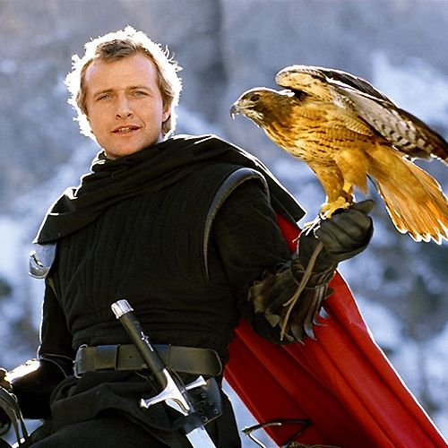 "Rutger Hauer as ""Navarre"" in the movie ""Ladyhawke"""