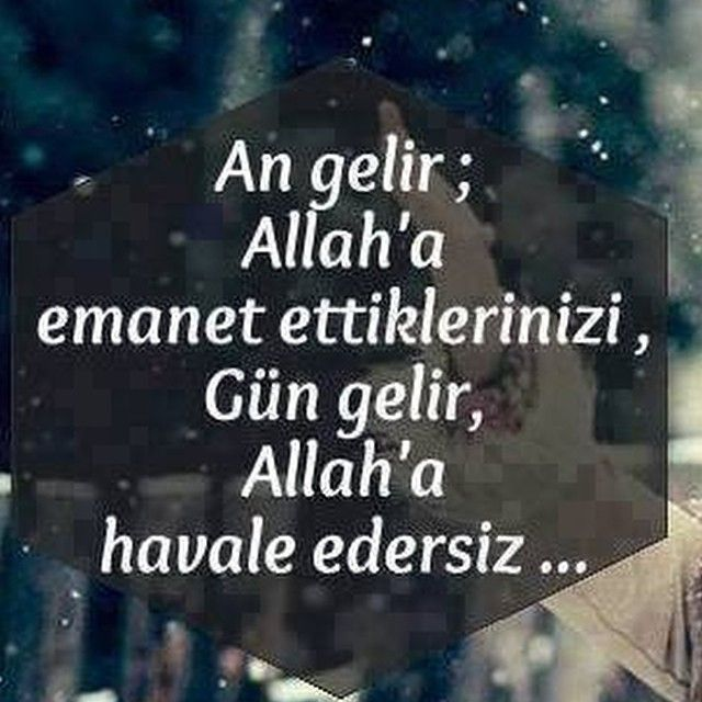 Feryal Gulman @feryalgulman Instagram photos | Websta (Webstagram)