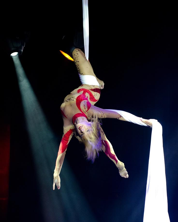 Aerial Silks Stage Show